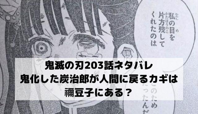 【鬼滅の刃ネタバレ203話最新話確定】鬼化した炭治郎が人間に戻るカギは禰豆子にある?