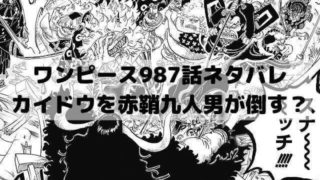 【ワンピース最新話ネタバレ987話速報】カイドウを赤鞘九人男が倒す?
