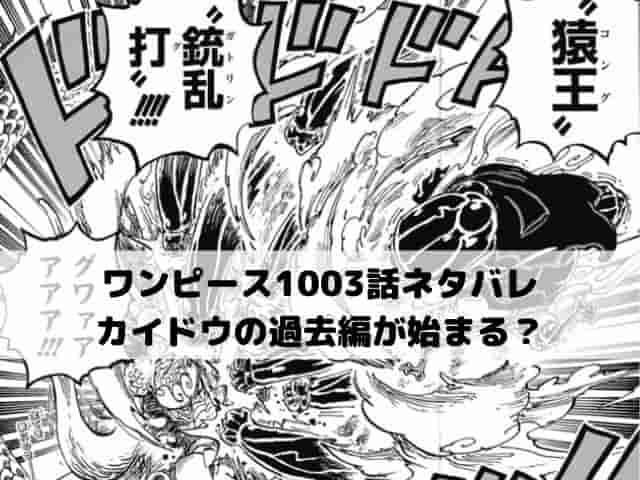 【ワンピースネタバレ1003話最新話速報】カイドウの過去編が始まる?