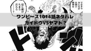 【ワンピースネタバレ最新話1014話速報】ルフィを倒したカイドウVSヤマト?